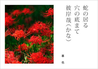 正岡 子規 俳句 分類